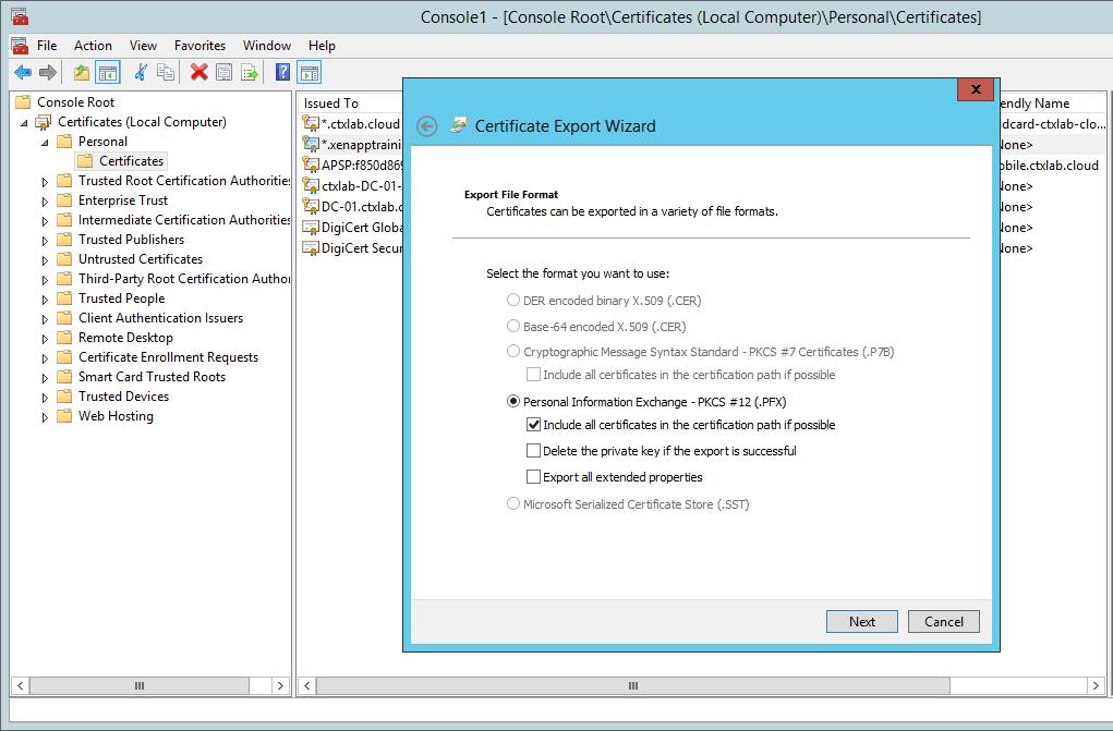 xenmobile certificate simplicity 04